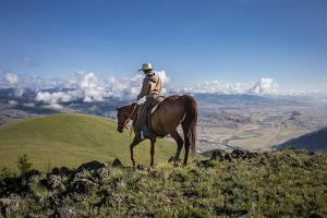 A Woman Rides the Range Above the Anderson Ranch to Deter Predators from the Cattle by Cory Richards