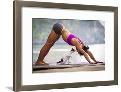 Downward Facing Dog Pose Or Adho Mukha Shvanasana Meets Upward Facing Cat