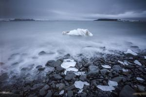 Sea Ice Off Hooker Island by Cory Richards
