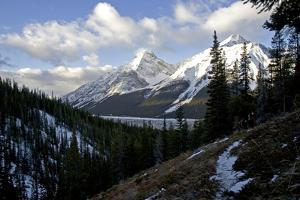Snow Covered Peaks of the Canadian Rocky Mountains by Cory Richards