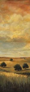 Five Oaks I by Cory Steffen