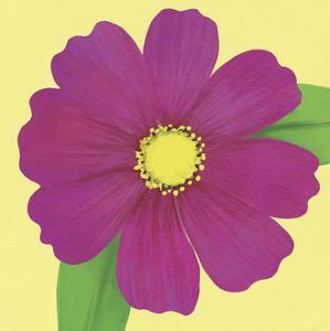 Flower Art 11 by Cory Steffen