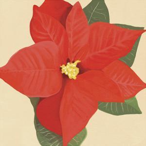 Flower Art 12 by Cory Steffen
