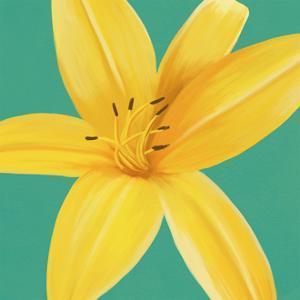 Flower Art 13 by Cory Steffen
