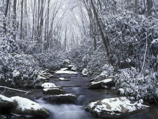 Cosby Creek in Winter, Great Smoky Mountains National Park, Tennessee, USA-Adam Jones-Photographic Print