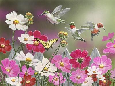 Cosmos and Hummingbirds-William Vanderdasson-Giclee Print