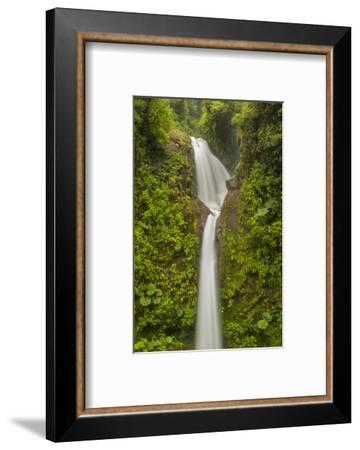 Costa Rica, Monteverde Cloud Forest Biological Reserve. La Paz Waterfall Scenic-Jaynes Gallery-Framed Photographic Print