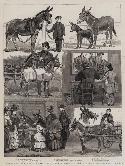 Costermongers' Jubilee Pony and Donkey Show at the People's Palace, East London--Giclee Print