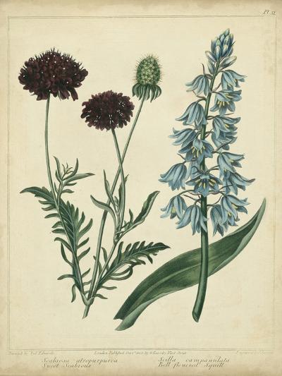 Cottage Florals VI-Sydenham Teast Edwards-Art Print