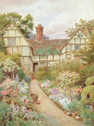 Cottage Garden-Thomas Nicholson Tyndale-Giclee Print