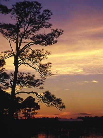 Cotton Bayou at Sunset, Orange Beach, AL-Jeff Greenberg-Photographic Print