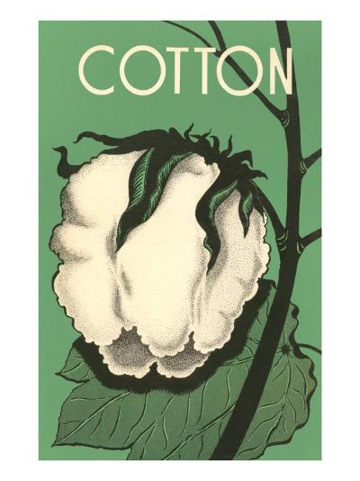 Cotton Boll--Art Print