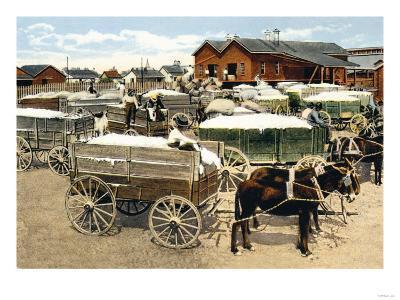 Cotton Wagons--Art Print