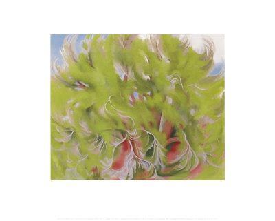 https://imgc.artprintimages.com/img/print/cottonwood-tree-in-spring-1943_u-l-eqr9w0.jpg?p=0