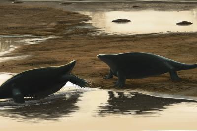 Cotylorhynchus Confrontation on the Water's Edge-Stocktrek Images-Art Print