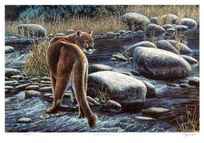 Cougar Crossing-Cyril Cox-Limited Edition