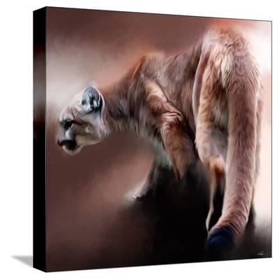 Cougar-Paul Miners-Stretched Canvas Print