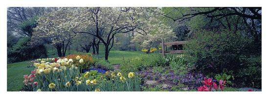 Country garden, Old Westbury Gardens, Long Island-Richard Berenholtz-Art Print