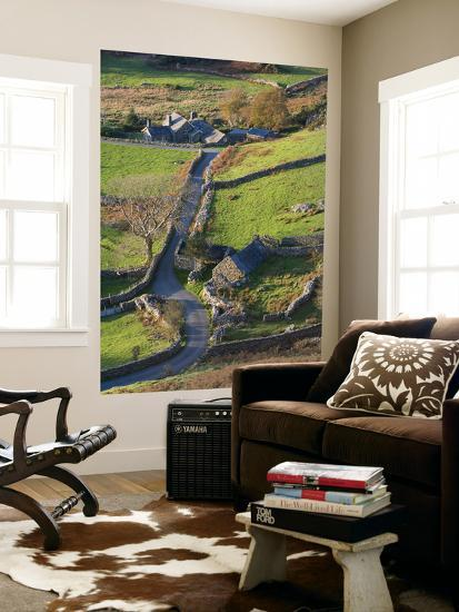 Country lane and houses, Snowdonia, North Wales-Peter Adams-Giant Art Print