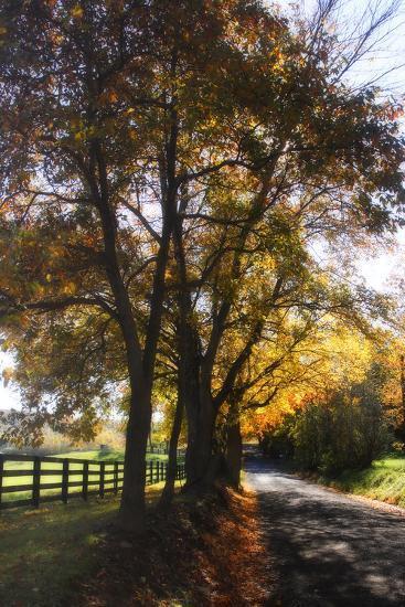 Country Road III-Alan Hausenflock-Photographic Print