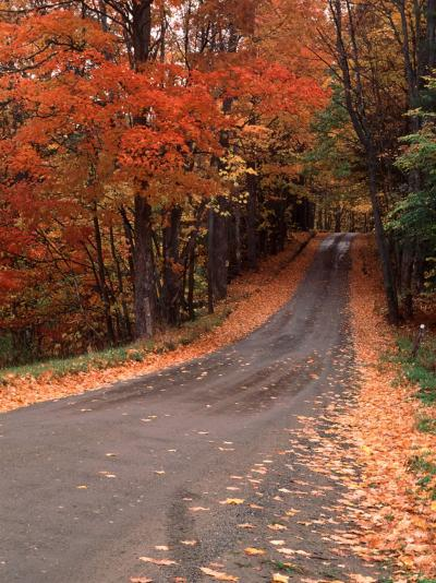 Country Road in Autumn, Vermont, USA-Charles Sleicher-Photographic Print