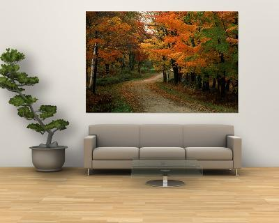 Country Road in the Fall, Vermont, USA-Charles Sleicher-Giant Art Print