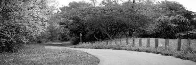 Country Road-Kelly Poynter-Photographic Print