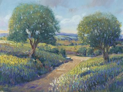 Country Sentrees I-Tim OToole-Art Print