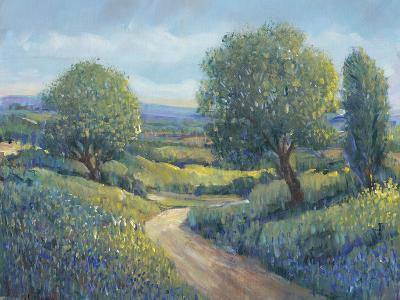 Country Sentrees II-Tim OToole-Art Print