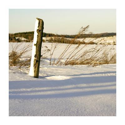 Country Snow I-Jean-Fran?ois Dupuis-Art Print