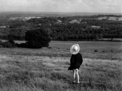 Country View-Chaloner Woods-Photographic Print