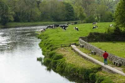 Countryside, County Kilkenny, Leinster, Republic of Ireland (Eire), Europe-Nico Tondini-Photographic Print