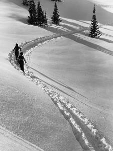 Couple Cross-Country Skiing