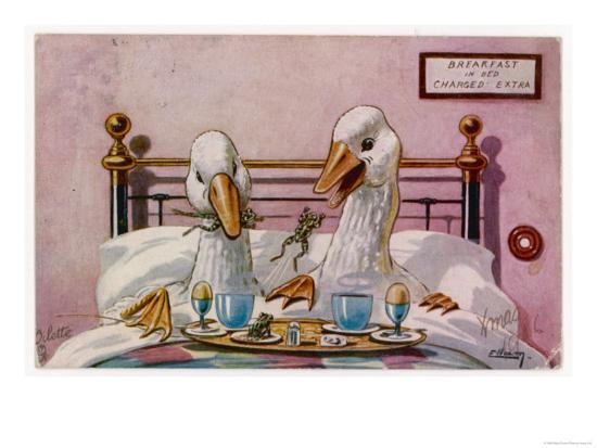 Couple of Geese Breakfast in Bed: Their Meal Includes Eggs Can They be Cannibals?--Giclee Print
