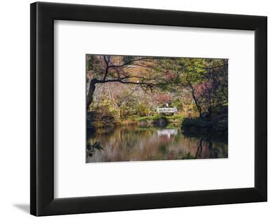 Couple walking across a bridge over a pond in the Narita Temple Garden-Sheila Haddad-Framed Photographic Print