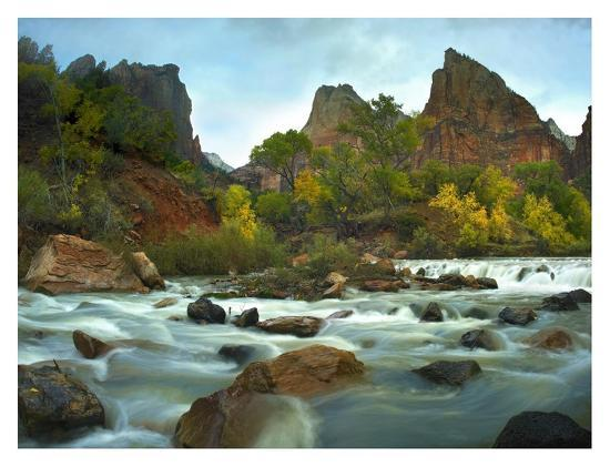 Court of the Patriarchs rising above river, Zion National Park, Utah-Tim Fitzharris-Art Print