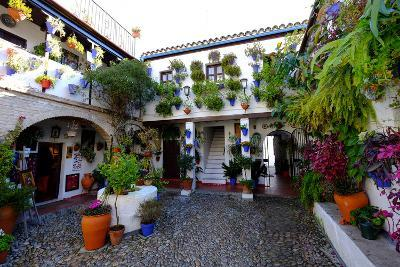 Courtyard of Casa Patio, Cordoba, Andalucia, Spain-Carlo Morucchio-Photographic Print
