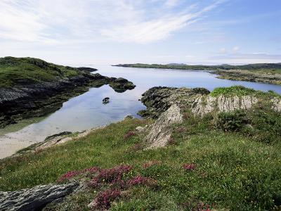 Cove, Near Schull, Co. Cork, Munster, Eire (Republic of Ireland)-David Hughes-Photographic Print