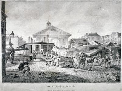 Covent Garden Market, Westminster, London, 1815--Giclee Print