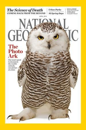 Cover of the April 2016 National Geographic Magazine-Joel Sartore-Photographic Print