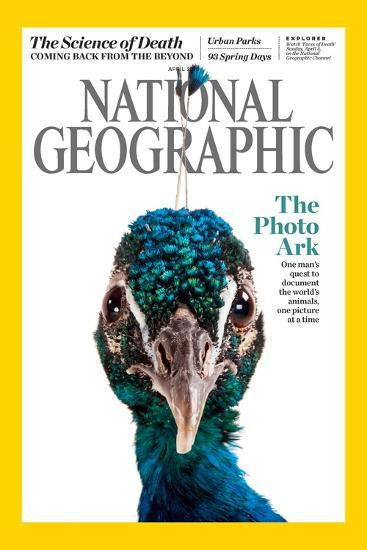 Cover of the April National Geographic Magazine-Joel Sartore-Photographic Print