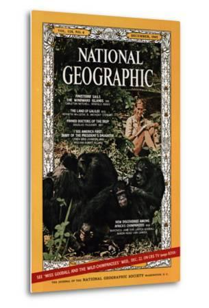 Cover of the December, 1965 National Geographic Magazine