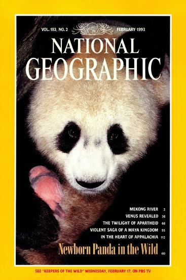 Cover of the February, 1993 National Geographic Magazine-Lu Zhi-Photographic Print