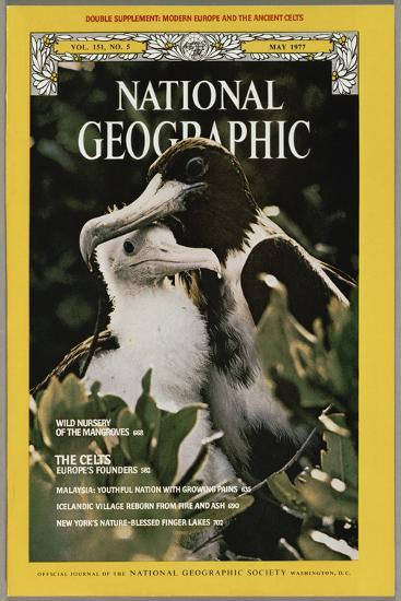 Cover of the May, 1977 National Geographic Magazine-Bianca Lavies-Photographic Print