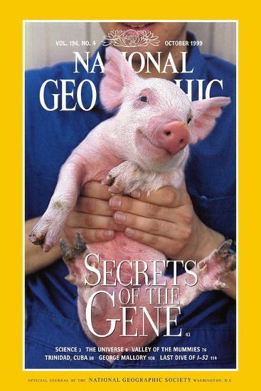 Cover of the October, 1999 National Geographic Magazine-Karen Kasmauski-Photographic Print