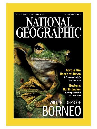 Cover of the October, 2000 National Geographic Magazine-Tim Laman-Photographic Print