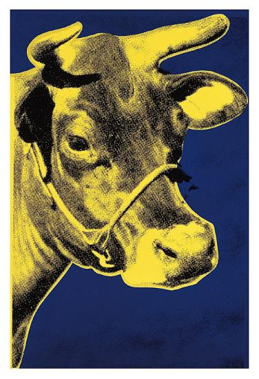 Cow, c.1971 (Blue and Yellow)-Andy Warhol-Art Print