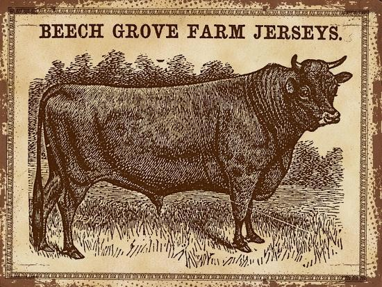 Cow - Jerseys 2-The Saturday Evening Post-Giclee Print
