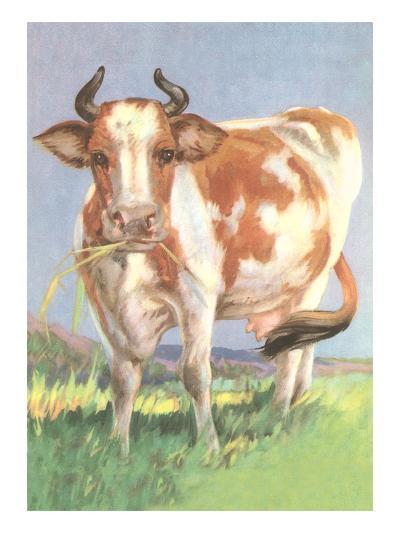 Cow--Art Print