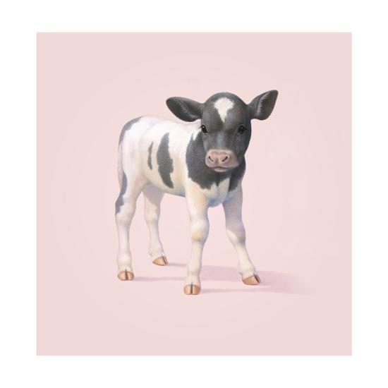 Cow-John Butler Art-Giclee Print
